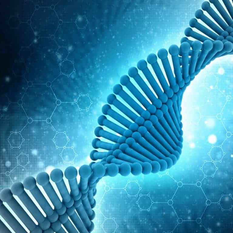 Scientist Deciphers Instructions to Claim Bitcoin In a DNA Sample