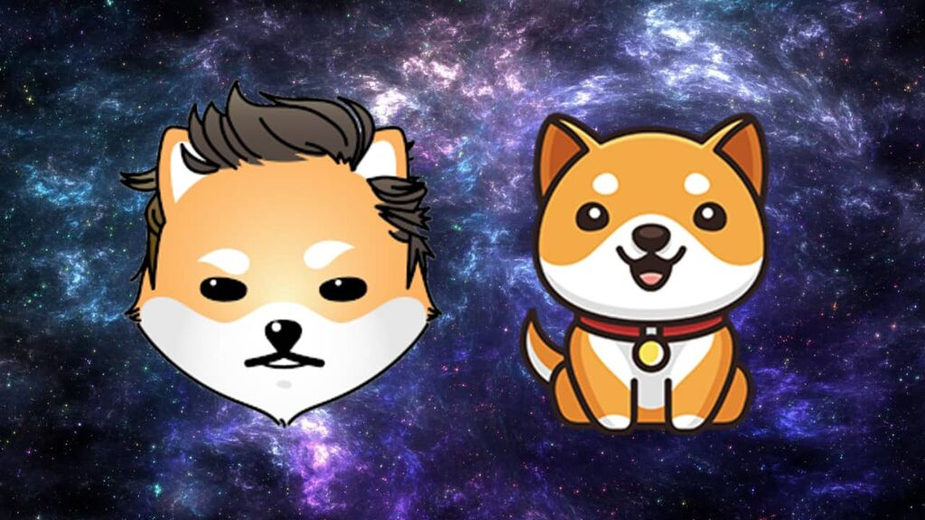 As DOGE, SHIB Markets Fall Back, Baby Doge Coin and Dogelon Mars Prices Skyrocket